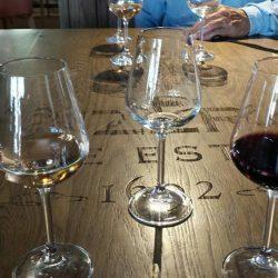 Sudáfrica. Ruta del Vino o Cape Winelands
