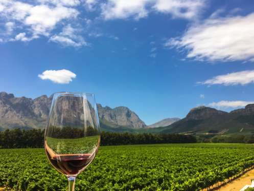 Ruta del Vino o Cape Winelands, Sudáfrica