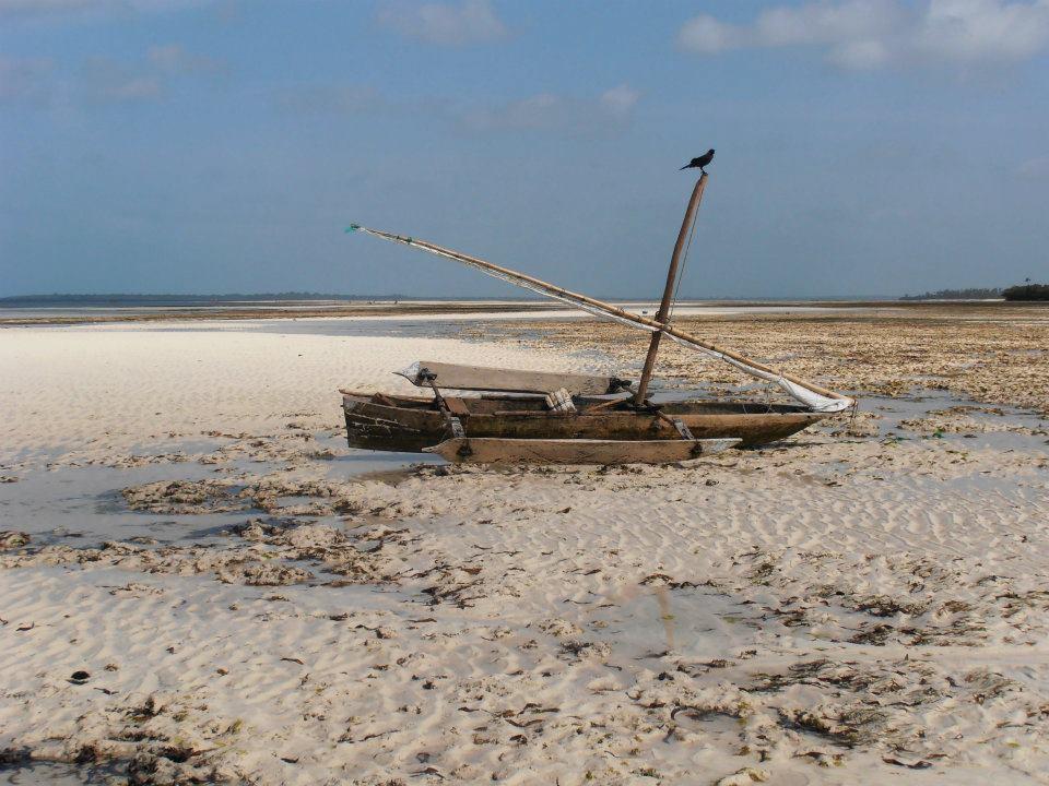 Navegar en Dhow por el Sur de Zanzíbar