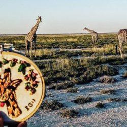 Bordados inspirados en Namibia