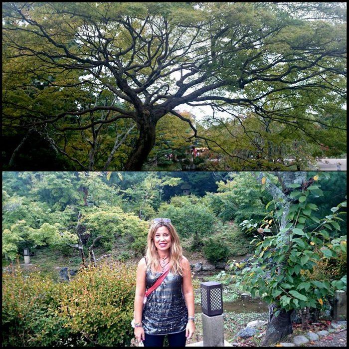 Kioto, Fushimi Inari y Nara