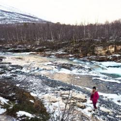 Parques nacionales de la Laponia Sueca